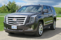 Cadillac Escalade 2016 by Jil McIntosh (21)