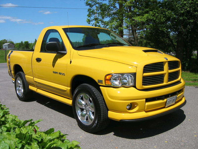 Dodge Ram Rumble Bee 2004 (3)